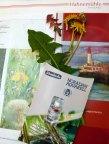 Löwenzahn, Hahnemühlepapier und Schmicke Aquarellfarben sind eine ideale Kombination (c) FRank Koebsch