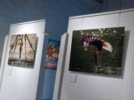 Schnappschüsse aus der Ausstellung Grandiose Naturdokumente im Rahmen des Fotofestivals Horizonte (c) Frank Koebsch (1)