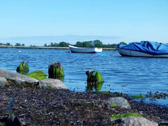 Boote im Bodden vor Middelhagen (c) FRank Koebsch (2)