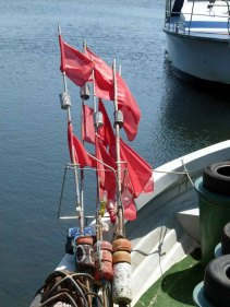 Die letzten Erinnerungen an einen Fischereihafen Groß Zicker (c) FRank Koebsch (5)