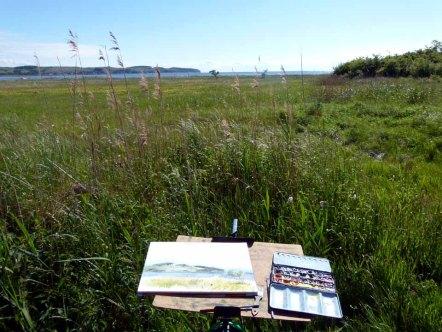 Malkurs auf den Boddenwiesen von Middelhagen (c) FRank Koebsch (5)