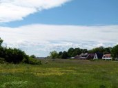 Motive auf den Boddenwiesen von Middelhagen (c) Frank Koebsch (2)