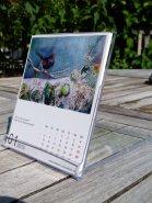 Aquarell Kalender 2015 in CD Format (c) Frank Koebsch (2)