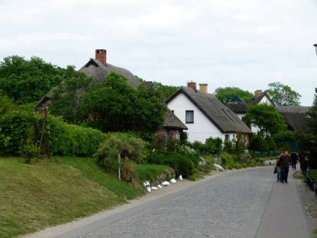 Reetgedeckte Häuser an der Hauptstraße von Groß Zicker (c) Frank Koebsch