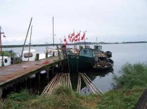 wildromantischer Fischereihafen von Groß Zicker September 2007 (c) FrankKoebsch (1)