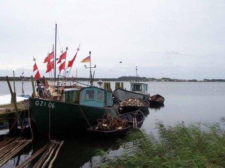 wildromantischer Fischereihafen von Groß Zicker September 2007 (c) Frank Koebsch (5)