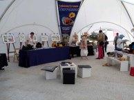 Die Ausstellung Faszination Galopper auf dem Ostsee Meeting 2014 (c) Frank Koebsch (4)