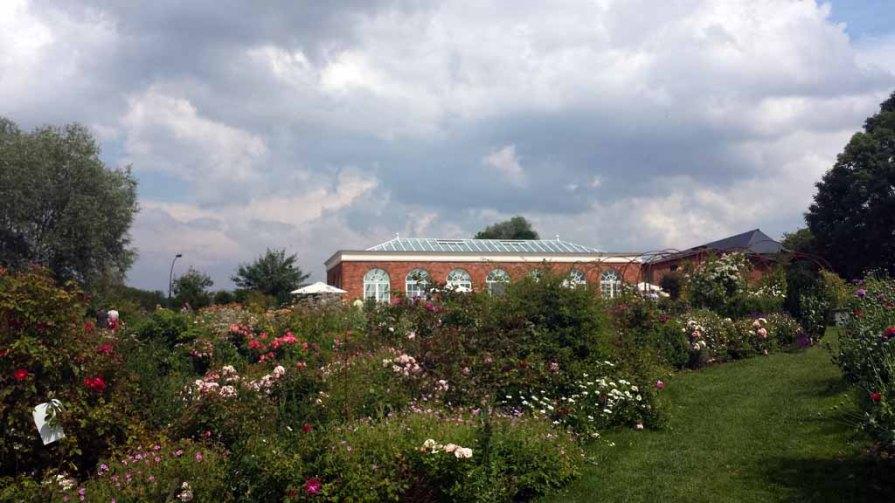 Orangerie im Rosenpark Groß Siemen (c) Frank Koebsch (1)