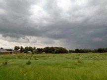 Stimmung eines Regentages über Groß Siemen (c) Frank Koebsch (2)