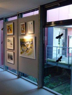 Die Ausstellung Faszination Kraniche im Biosphärenreservat Schaalsee (c) Frank Koebsch (2)
