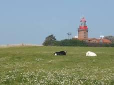 Leuchtturm Barstorf (c) Gerda Brüggemann