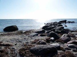 Am Strand von Thiessow(c) Frank Koebsch