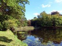 Historische Parkanlage des Schlosses Griebenow (c) FRank Koebsch (3)