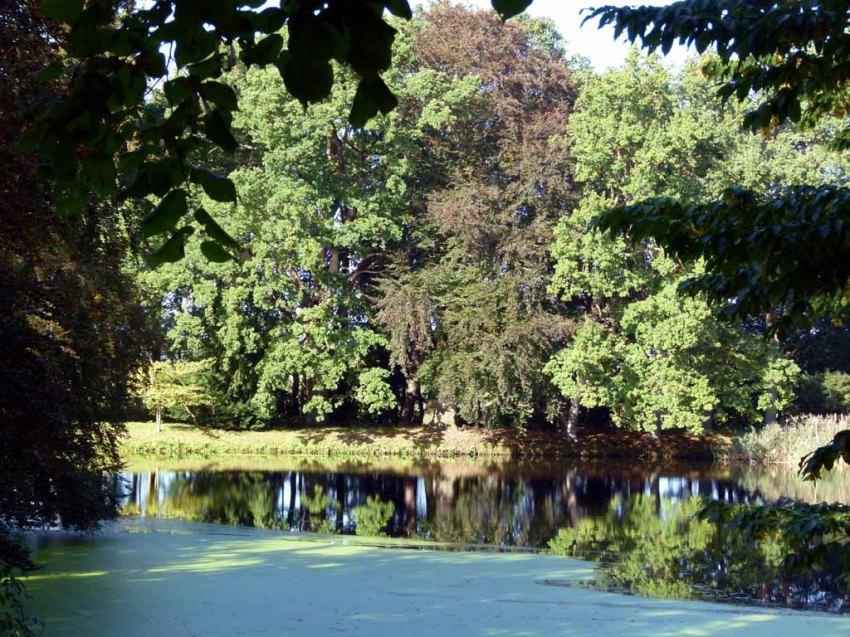 Historische Parkanlage des Schlosses Griebenow (c) FRank Koebsch (7)