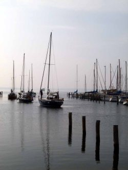 Motive im Hafen von Rerik (c) Frank Koebsch (1)