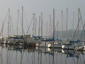 Motive im Hafen von Rerik (c) Gerda Brüggemann (3)