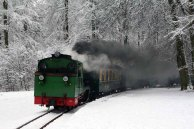 Rasender Roland im Schnee (c) Jost Grünheid
