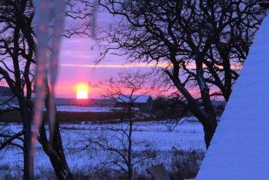 Winterabend in Mittelhagen (c) Boddenwiesen vor Middelhagen im Winter (c) Jost Grünheid