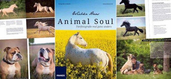 Animal Soul - Tierfotografie mal ganz anders von Wiebke Haas