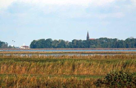 Blick über die Boddenwiesen Ummanz nach Schapprode (c) FRank Koebsch