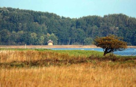 Blick über die Boddenwiesen Ummanz zur Kranichaussichtsplattform an der Udarser Wiek (c) FRank Koebsch