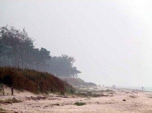 Herbst an der Ostsee (c) FRank Koebsch (3)