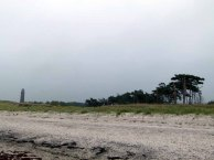 Küstenwald am Darßer Ort (c) Frank Koebsch (1)