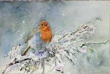 Ein Wintergruß (c) Aquarell mit einem Rotkehlchen von Hanka Koebsch