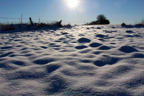 Ein Wintermorgen in Mecklenburg (c) FRank Koebsch