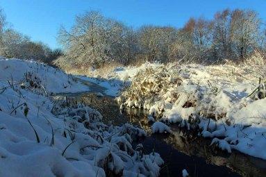 Ein Wintermorgen in Sanitz (c) Frank Koebsch
