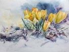 Geschafft (c) Krokuss Aquarell von Hanka Koebsch