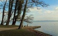Blick von Schlosspark Wiligrad auf den Schweriner See (c) Frank Koebsch (4)