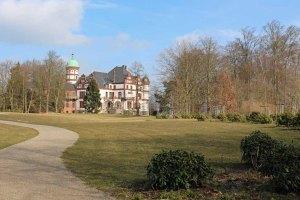 Rhododendron im Schlosspark Wiligrad (c) Frank Koebsch (1)