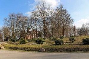 Rhododendron im Schlosspark Wiligrad (c) Frank Koebsch (2)