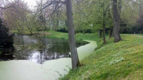 Schlosspark Griebenow im Frühling (c) Frank Koebsch