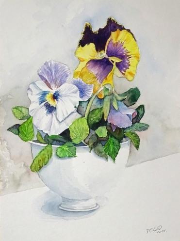 Stiefmütterchen als Frühlingsgruß (c) Aquarell von Frank Koebsch