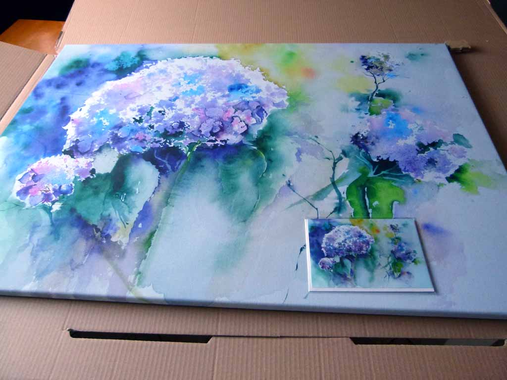 druck des aquarells hortensie in blau auf leinwand und als kunstkarte c frank koebsch bilder. Black Bedroom Furniture Sets. Home Design Ideas