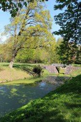 Frühling im Schloßpark von Griebenow (c) Frank Koebsch (2)