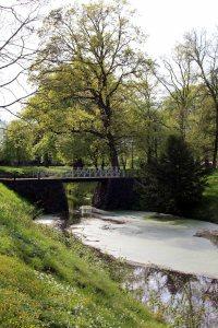 Frühling im Schloßpark von Griebenow (c) Frank Koebsch (3)