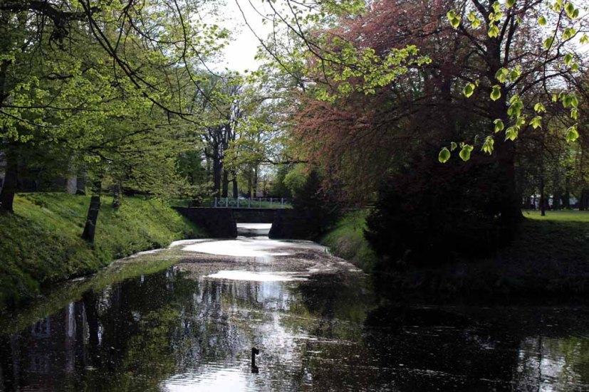 Frühling im Schloßpark von Griebenow (c) Frank Koebsch