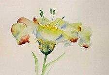 Aquarell der Kunstblume Lore (c) Hanka Koebsch (1)