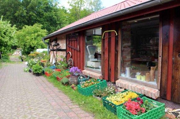 Der Hofladen von Wiligrad lädt zum Stöbern ein (c) Frank Koebsch (1)