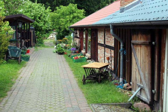 Der Hofladen von Wiligrad lädt zum Stöbern ein (c) Frank Koebsch (2)