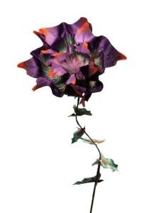 """Hermann August Weizenegger, Die falsche Blume – Blume """"Sebnitzer Flussteufel"""", Seidenstoff, handkoloriert, 40 cm x ø 13 cm"""