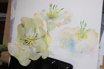 Die Kunstblume Lore und ihre Aquarelle von Hanka Koebsch (4)