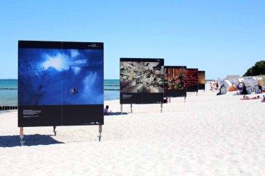 Fotowände am Strand von Zingst - Fotofestival Horizonte 2015 (c) Frank Koebsch (3)