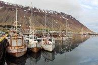 Hafen von Ísafjörður auf Island (c) Frank Koebsch