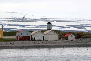 Insel Vigur bei Ísafjörður (c) Frank Koebsch