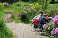 Malen im Park von Wiligrad (c) Frank Koebsch (13)