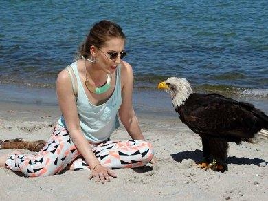 Weißkopfseeadler und Model am Strand von Zingst (c) Frank Koebsch (2)